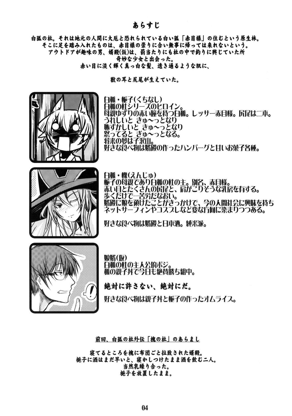 Byakko no Mori Sono Go 2