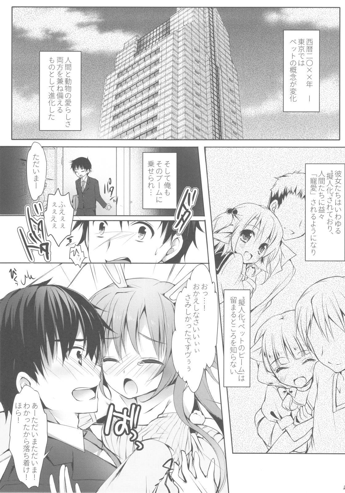 Boku no Pet ga Hatsujouki de Chi*po wo Hanashitekurenai 3