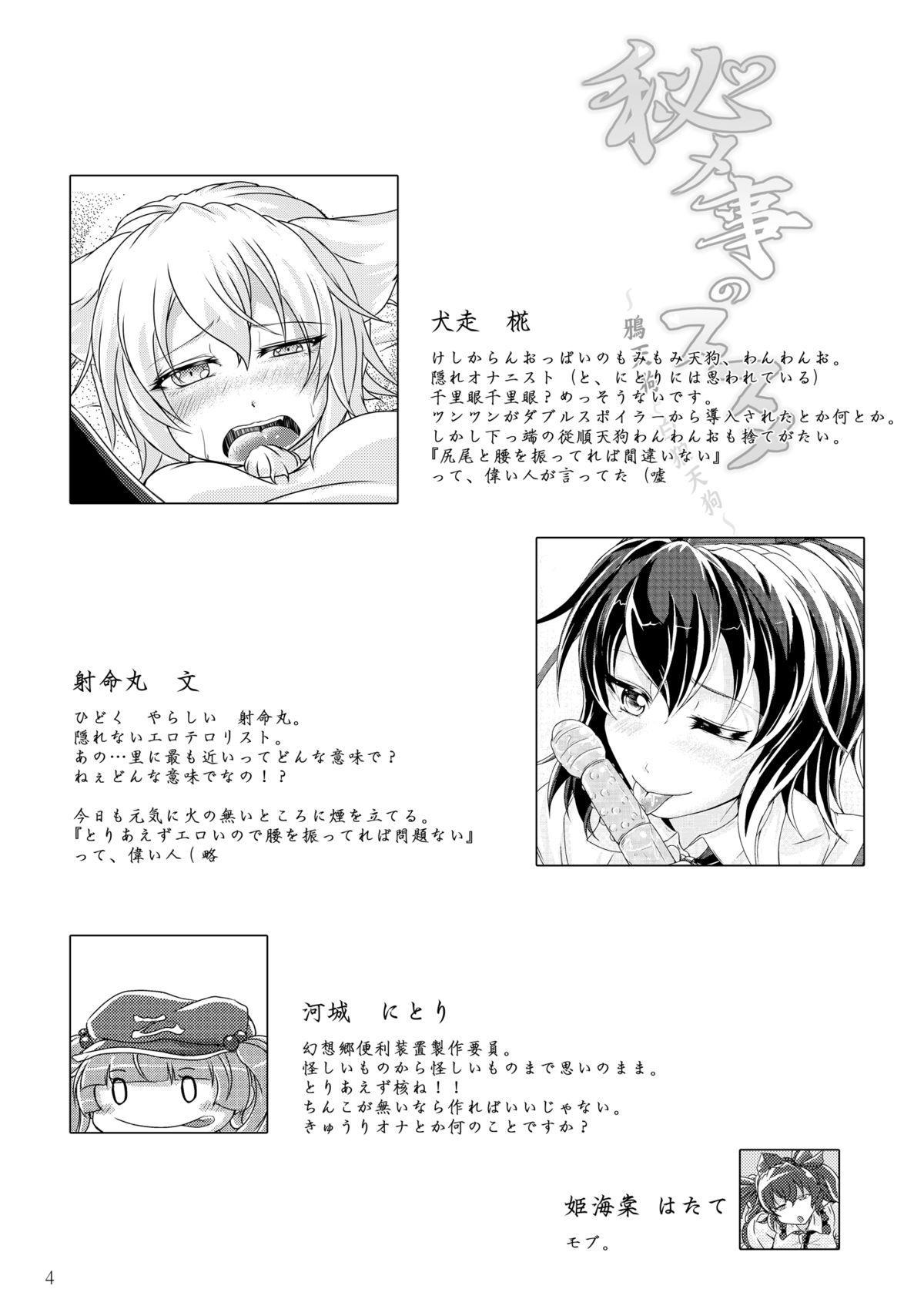 Himegoto no Susume 3