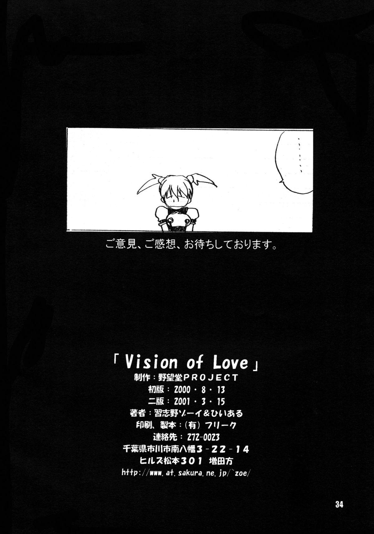 Vision of Love 33