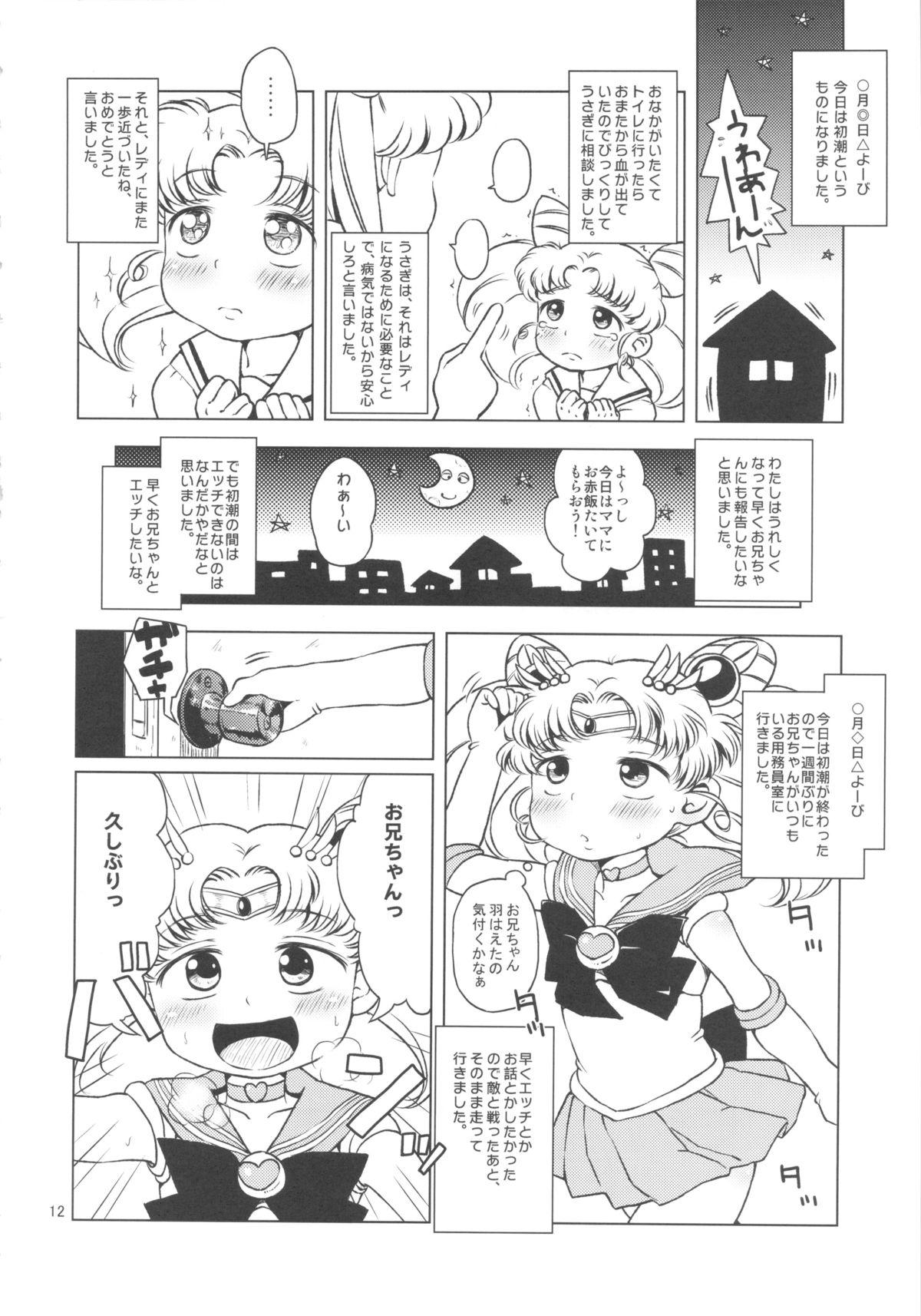 Chibiusa no Himitsu Diary 10