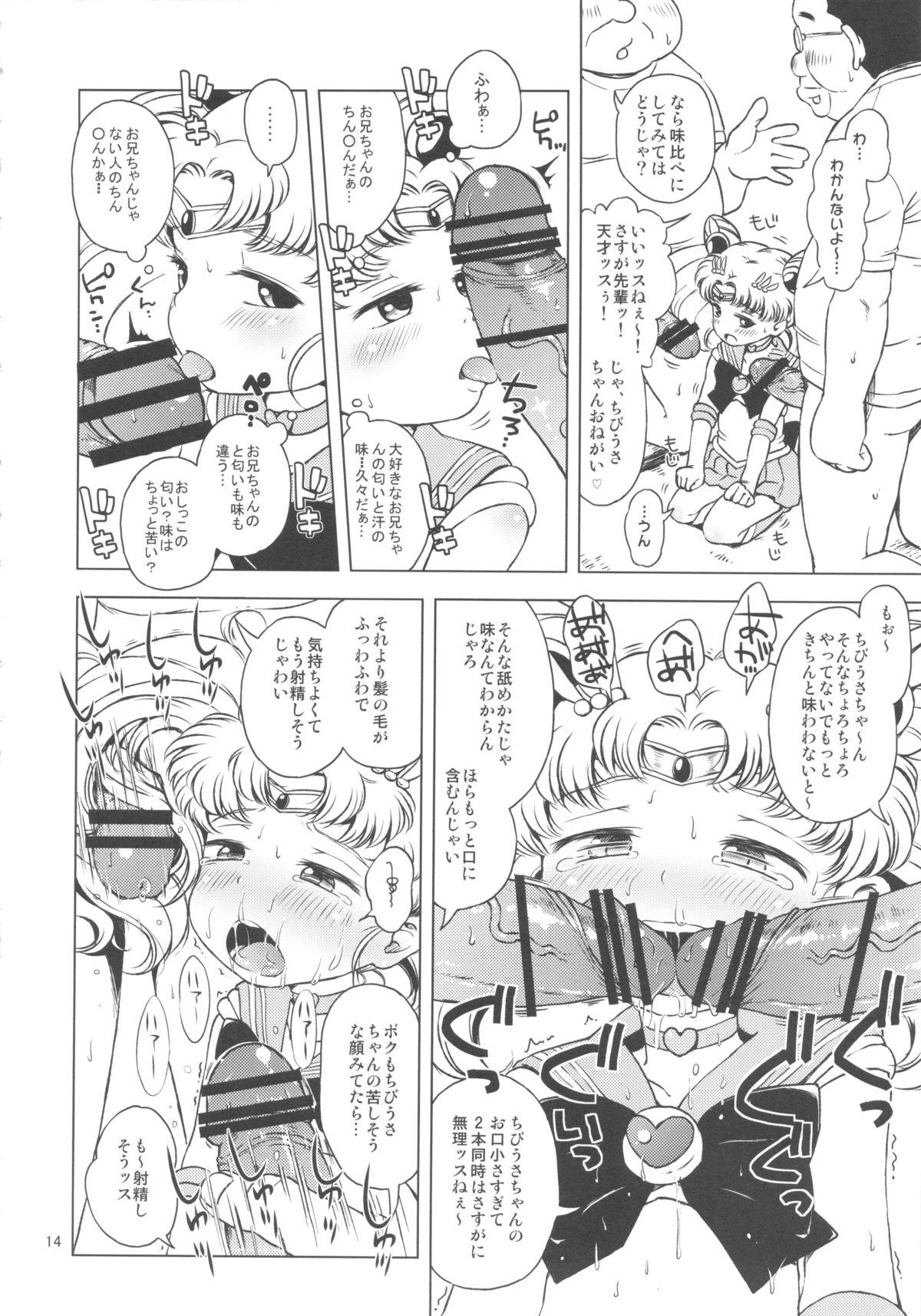 Chibiusa no Himitsu Diary 12