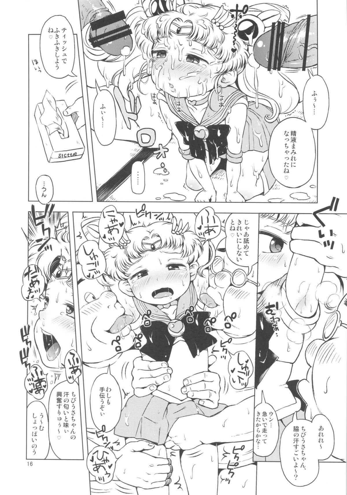 Chibiusa no Himitsu Diary 14