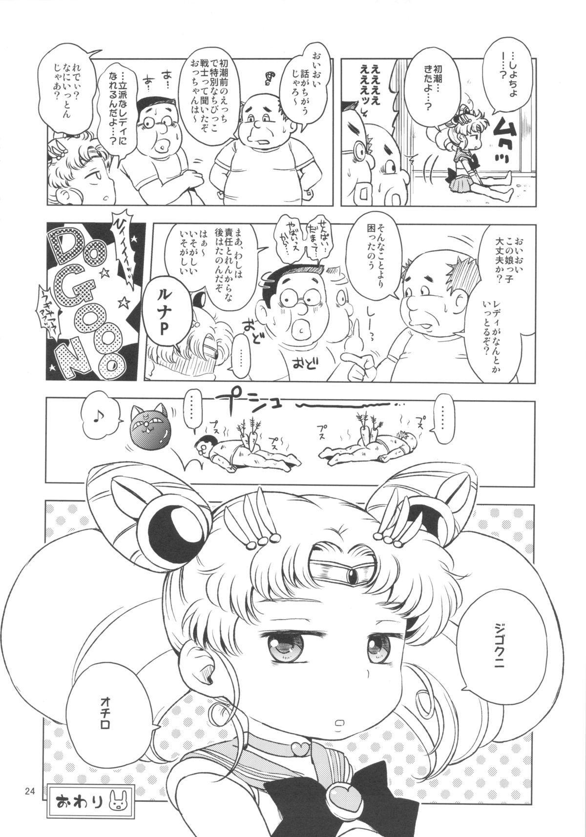 Chibiusa no Himitsu Diary 22