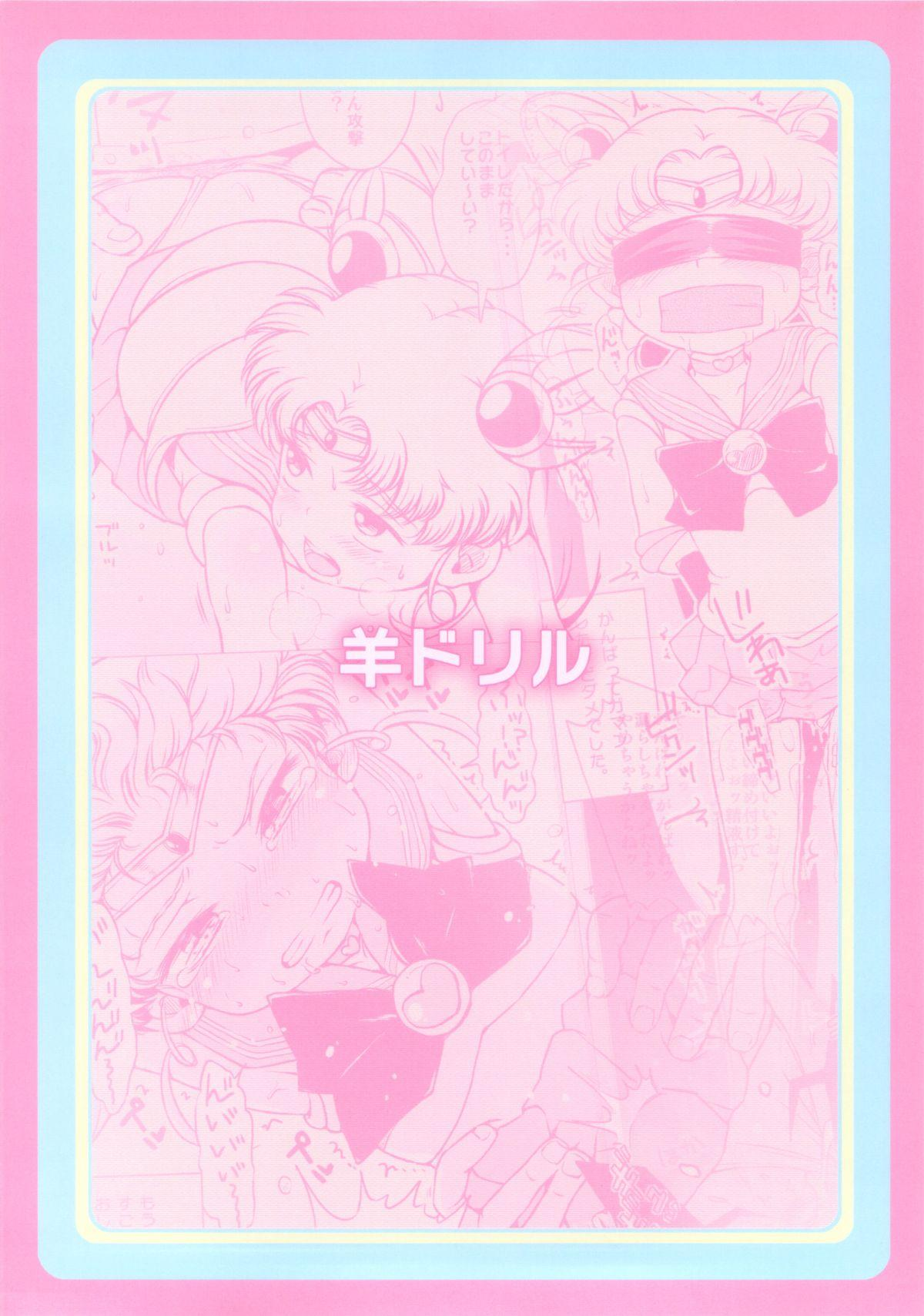 Chibiusa no Himitsu Diary 25