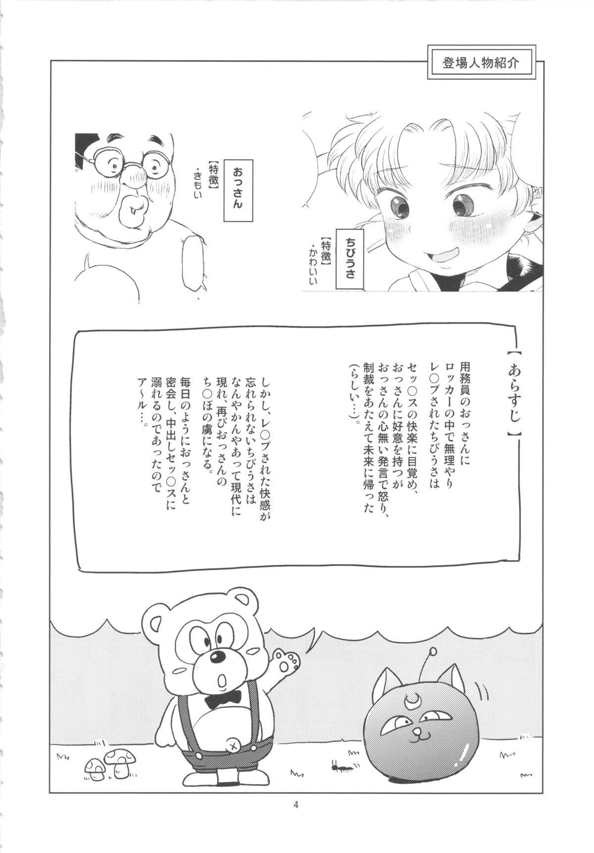 Chibiusa no Himitsu Diary 2